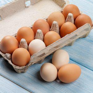 Dairy / Eggs